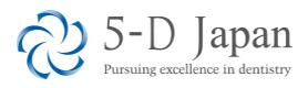 5-D Japan